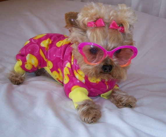 I Am Feeling Just Duckie    dog pet pajamas   Custom Made