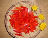 Red with Orange Streaked Glass Shards for Mosaic Art Designing