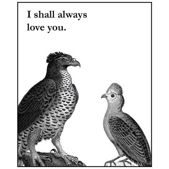 Outlaw Love Birds Card