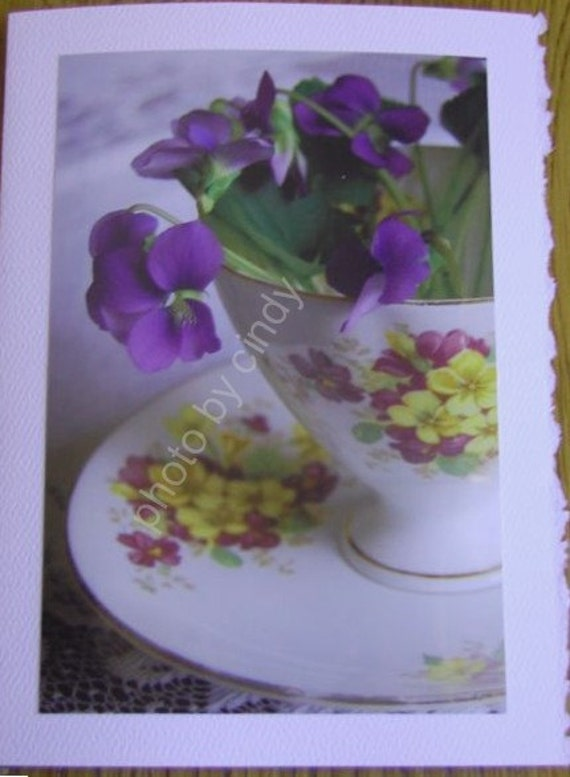 Blank Note Cards Assortment, Violets Teacups Photo Note Cards, Set of 5, Greeting Cards