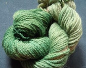 Hand Dyed Worsted Weight Yarn 110 Yards Clever Clovers OOAK