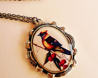 Adorable Big Bird Charm Necklace