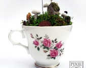 Fairy town in a pretty pink teacup -  Faerie Houses, Moss and Mushrooms Oh My
