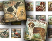 INSTANT DOWNLOAD Vintage Dogs Digital Images Sheet Collie Pug Yorkshire 1 Inch and 7/8 Inch Squares for Pendants Magnets (GS114,GSS114)