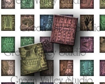 INSTANT DOWNLOAD Digital Collage Sheet Vintage Dictionary Images Anatomy Human Body Skulls .873 x .75 for Scrabble Pendants (S50)