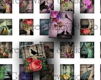 INSTANT DOWNLOAD Digital Images Collage Sheet Floral Vintage Flowers Birds Birdcages Feathers .873 x .75 for Scrabble Tile Pendants (S49)