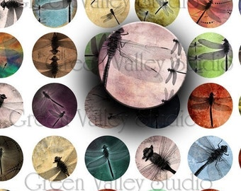 INSTANT DOWNLOAD Original Digital Art Dragonfly Dragonflies Digital Images Collage Sheet One 1 Inch Circles (C10)
