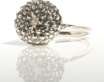 Baby sea Urchin Sterling silver Ring size 6 by Zulasurfing