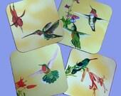 Hummingbirds On The Go