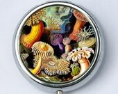 Sea anemone PILL case pillbox pill box holder underwater ocean sea nature calm pretty DIY