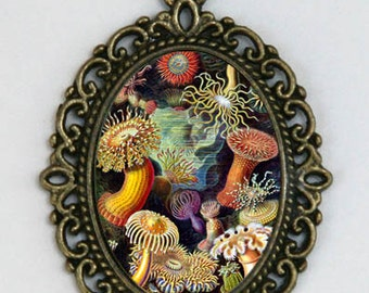 Sea anemone necklace Vintage illustration underwater ocean sea nautical