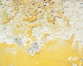 Flakes Of Gold - Amalfi - Italy - Travel - Photography - Picture - Photo - Image - Decor - Fine Art Photography