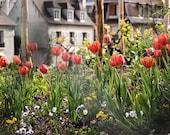 Montmartre - Paris Photography - Paris Photo - Paris Decor - Paris Image - Paris Picture - Fine Art Photography