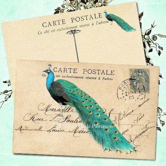 The Peacock Carte Postale French Note Cards