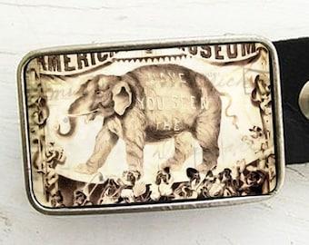 Belt Buckle- White Circus Elephant