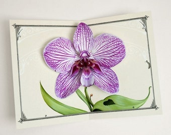 "Orchid Greeting Card Pop Up. Purple Flower Art for birthday, mother, sister, or thinking of you gift. More Info? Scroll & Read ""Item Details"