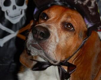 Black skulls & skeleton fleece pirate dog hat