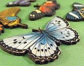 Large Butterflies - Collection of 7 Wood Butterflies