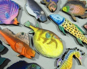 Tropical Fish Collection with Happy Whale Bonus