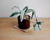 Fabric Spider Plant