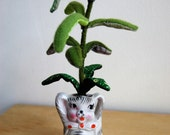Ombre Fabric Plant