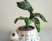 Turtle Stuffed Plant