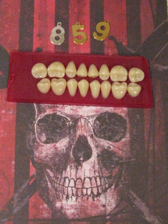 16 Individual Fake Dental Teeth