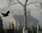 Fog Image, Through The Fog - Metallic Print