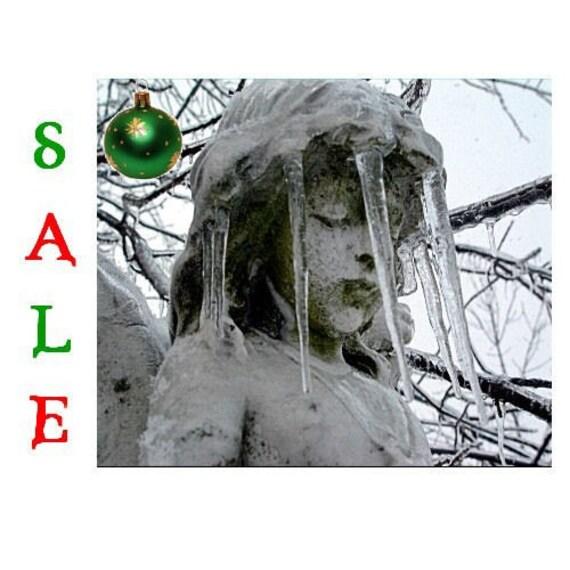 HALF PRICE ice veil