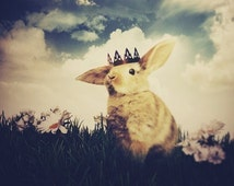 The Little Bunny Prince, Woodland Art Print