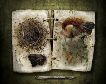 The Wing Collector, Dark Fairy Tales, Fantasy Art