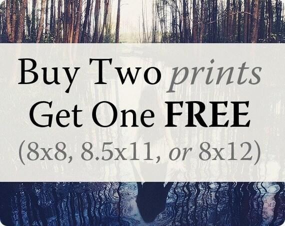 Large Prints, Buy 2 Get 1 FREE, 8x8, 8.5x11, or 8x12