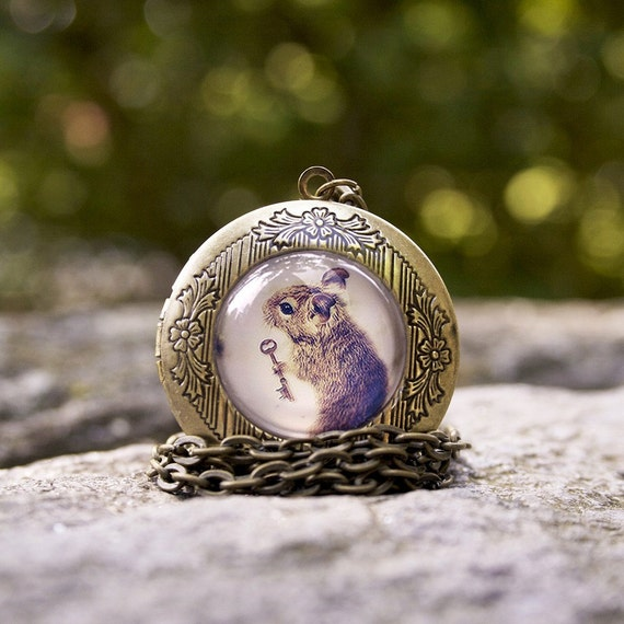 The Little Mouse Prince, Brass Gold Locket Necklace, 24 Inch Chain, Woodland Animal