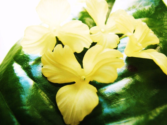 Orchid Flowers in  Soft Yellow Lucite(4 Flowers) b1838