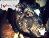 Pig Jewelry - Earrings Designed By My Potbelly Pig, Katie- As Seen On The Etsy on Sale Blog- Katie the Pig- Pets - Animals