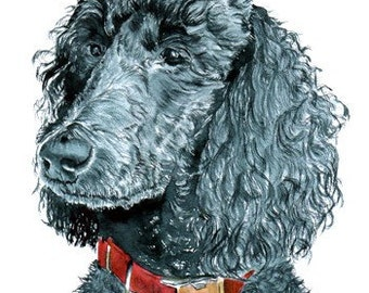 Black Poodle with name