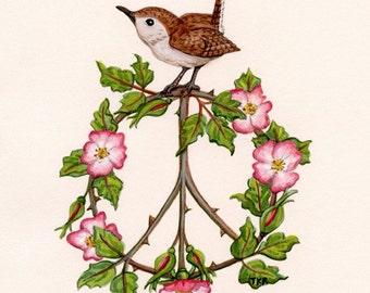 Peace Wren - Fine Art Print