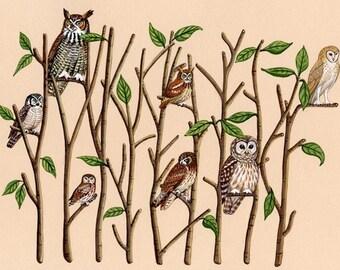 Owl Wood - Fine Art Print