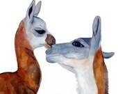 SALE - Original Alpaca Watercolor Painting by HamJ