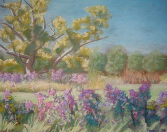 "original painting ""Deer Lake Asters"" plein air pastel"