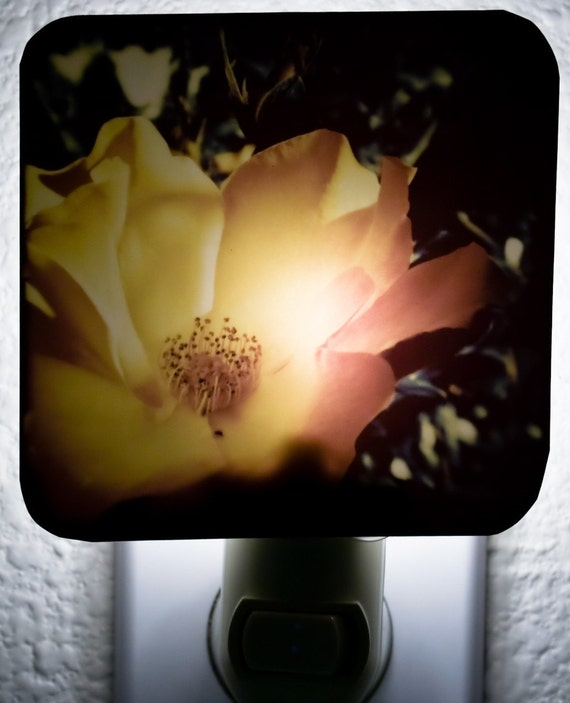 FREE SHIPPING    Acid Mermaid Rose Art Night-light