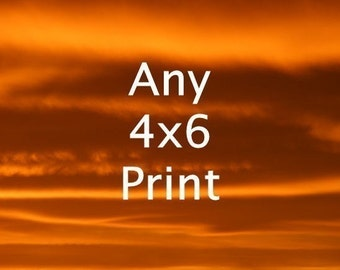 4x6 Print - Your Choice of Fine Art Nature Photos - Buy Two Get One Free