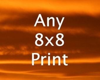 8x8 Print (or 8x10) - Your Choice of Fine Art Photos - Buy Two Get One Free
