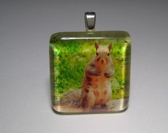 Squirrel Glass Tile Pendant