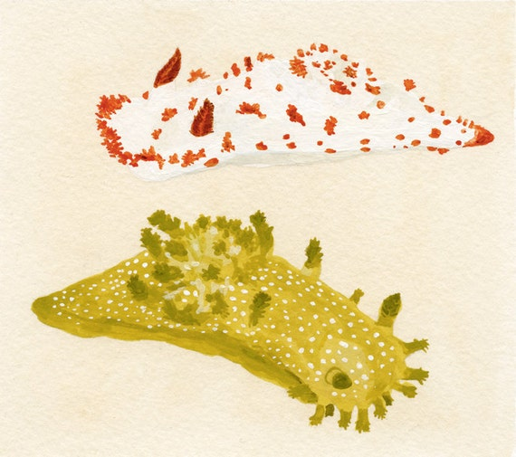 sea slugs original painting