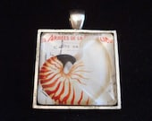 "Handmade 1"" Square Glass Pendant in a Silver Setting, Vintage Inspired Seashell"
