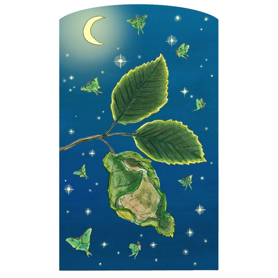 Cocoon and luna moths - 8 1/2in x 11in print