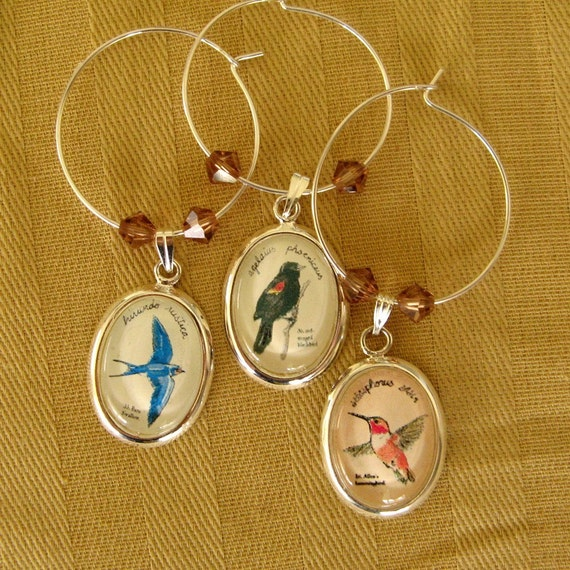 north American songbirds -- illustrated wine charms