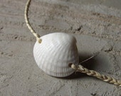Summer Wishes - Sea Shell Jewelry - Fiber Bracelet