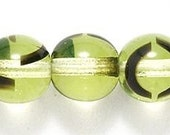 CZECH PERIDOT colored  w/TORTOISE design round beads 6MM (20)